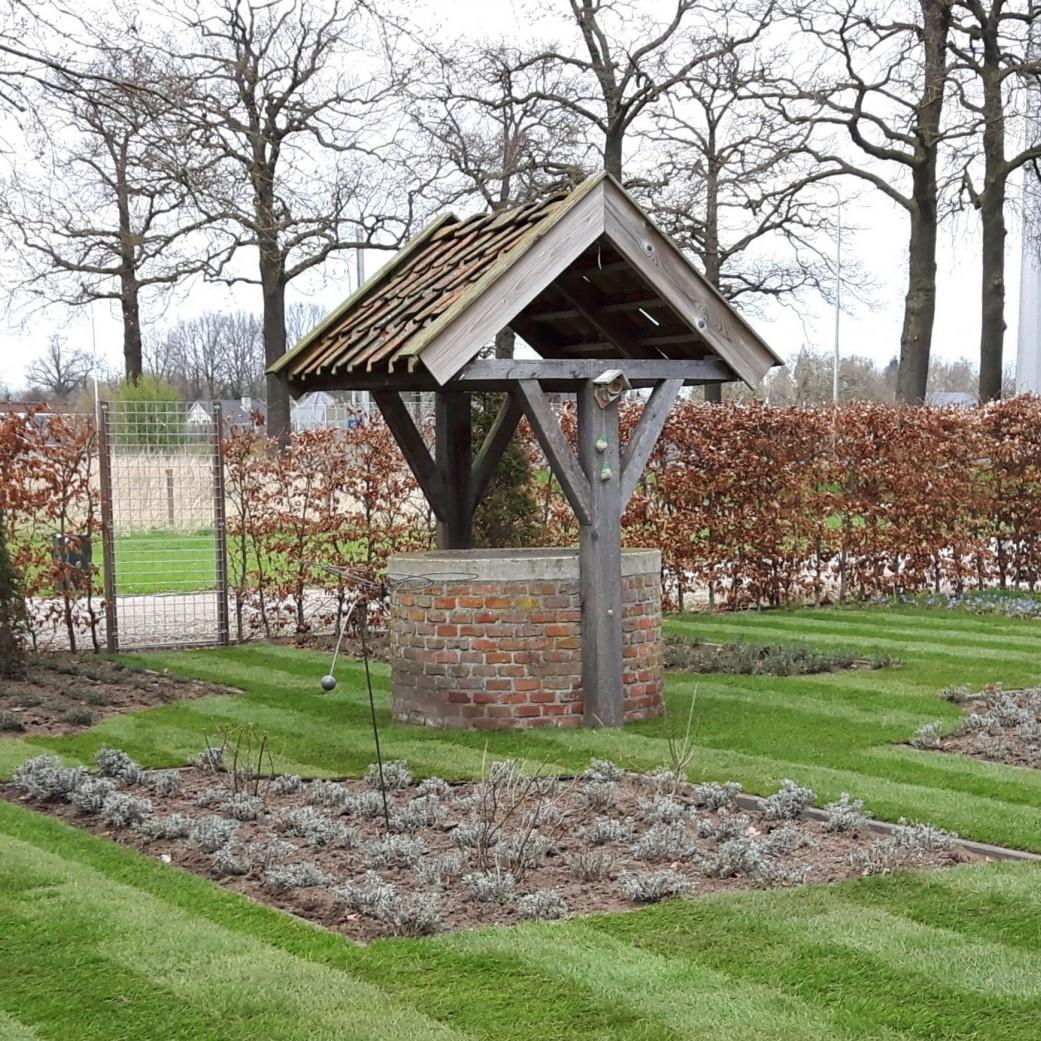 Landelijke tuin onder monumentale beuk