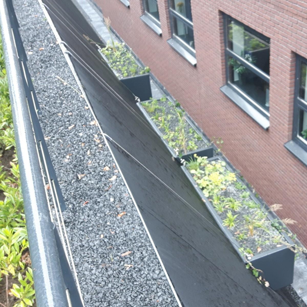 Uitzicht op groen vanuit de kelderverdieping